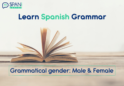 Spanish Grammatical Gender